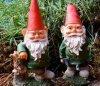gnomes.jpeg