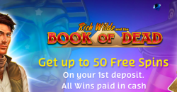 https://www.casinomeister.com/wp-content/uploads/Playojo-welcome-free-spins
