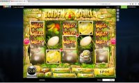 Golden Gorilla slots win
